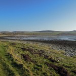 Best Bird Sites – St Ninian's Bay/ Straad