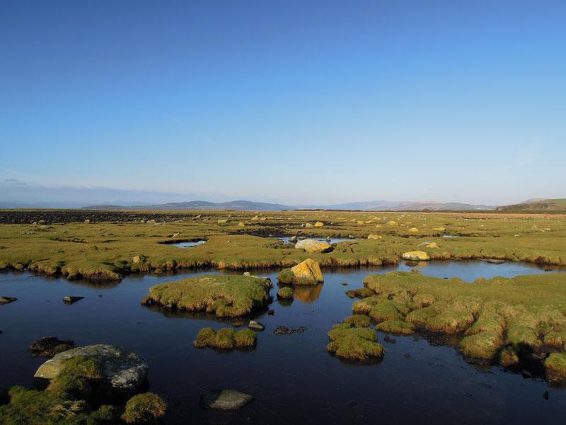 St Ninian's Saltmarsh
