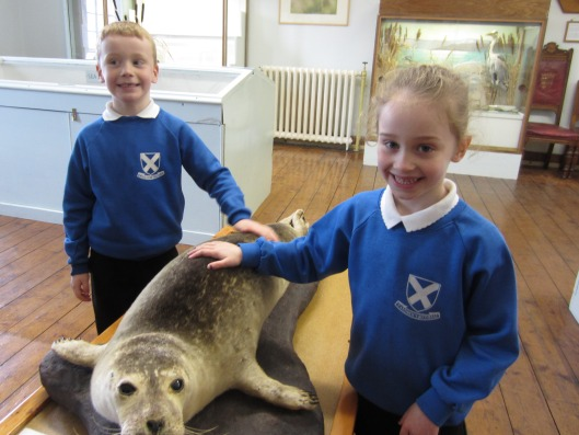 Young visitors from St Andrews school make friends with the seal.